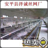 泽诚 长期批发折叠狗笼、铁丝狗笼、宠物笼、猫笼子、鸽子笼