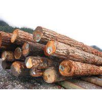 进口阿根廷红檀香木材(原木|木方|木皮)报关要多少天|熏蒸证代理