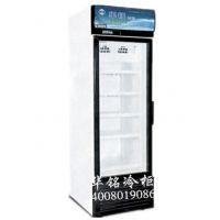 华铭SLDD--360立式冷冻单门展示柜