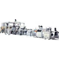 苏州金韦尔机械供应CPET片材挤出生产线