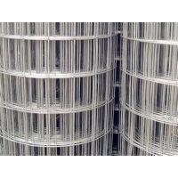 电焊网,热镀锌电焊网,荷兰网,江恒丝网