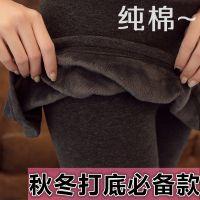 厂销假两件打底裤 韩版女士打底裙裤 秋冬加厚包臀假两件打底裤