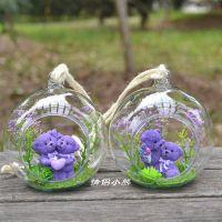 创意方寸世界爱心熊玻璃工艺品 高硼硅挂件 微景观植物摆件 批发