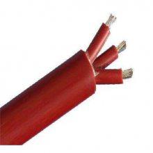 ZR-KGG耐高温电线电缆KGG ZR-DJFFP ZR-YFVP (必亮春辉牌)