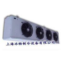 冰畅D型冷风机DL185 D型全系列冷风机