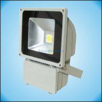 厂家供应LED投光灯,集成光源