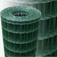 供应优质荷兰网批发|PVC喷塑浸塑荷兰网|养殖围栏荷兰网