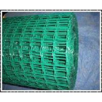 荷兰网 浸塑电焊网 波浪荷兰网价格