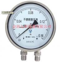 供应差压压力表YB-100 OMVGAR