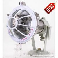 厂家直销BTd93-250增安型不锈钢防爆投光灯质量保障