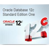正版供应甲骨文Oracle数据库11g无限用户 原厂服务
