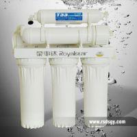 供应洛阳净水机(荣事达(RSD—1型(10T/PIII/G)))中空超滤膜技术 使用更方便