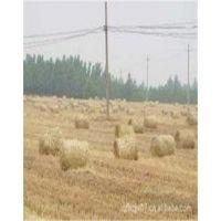 款的牧草秸秆收集机加工处