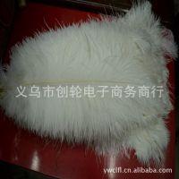 厂家直销: 羽毛 羽绒 鸵鸟毛