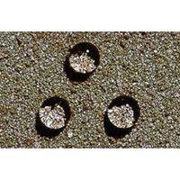 3#有机硅防水剂易水解特别是在酸性或碱性作用下形成 保质期3年