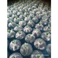 桶装水塑料外包装袋