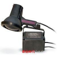 SB-100P紫外线灯/100W黑光灯