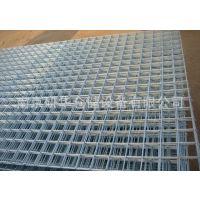 南京地区***早生产Q235,不锈钢,浸塑电焊网,批发优惠,可定制