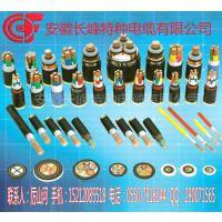 安徽长峰供应VVP YJVP YJA FVP金属屏蔽电力电缆