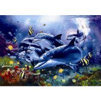 厂家供应海底世界3d立体画,高清3d立体画,来图来料定制加工