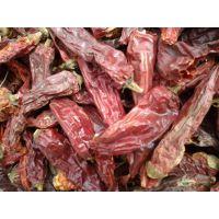 供应美国红优质,花皮辣椒