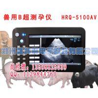 郑州豪润奇猪用B超机,便携式猪用B超,手持式猪B超价格