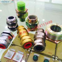 不锈钢电缆接头 M20*1.5黄铜接头 碳钢 304不锈钢接头报价