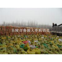 养殖饲料红枣供应厂家