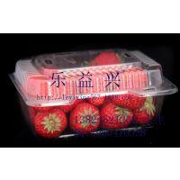 供应水果塑料盒子 草莓透明塑料盒 水果包装塑料盒