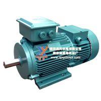 供应YZR/YDEZ/BZD/ZD/ZDR/YHZ起重及冶金电机(行车、减速机、起重机专用电机)