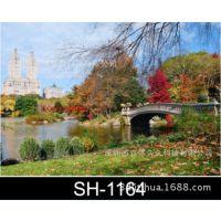 供应家庭电表箱3D装饰画,三维配电箱装饰画,3D立体装饰画图SH-1164