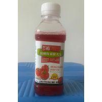 多禧番茄点花药 西红柿蘸花药 液体瓶装版 植物生长调节剂