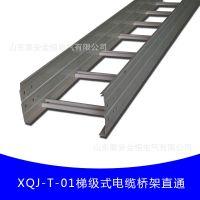 【行业领先】XQJ-T-01梯级式热镀锌喷塑电缆桥架直通 山东厂家