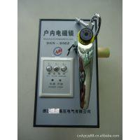 供应高压户内电磁锁DSN-BMY DSN-BMz DSN-II DSN-III