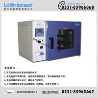 PH 030A型 培养/干燥两用箱(进口电机)