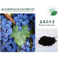 宝鸡润木 供应蓝莓花青素 25%