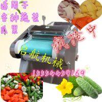 高效酸菜切丝机 家用多功能切片切丁机 启航耐用高效切片机