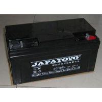 TOYO蓄电池 东洋6GFM65蓄电池 东洋12V65Ah蓄电池 东洋ups电池销售