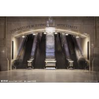 联盟电梯 销售 载客 载货 人行道 自动扶梯 杂物电梯