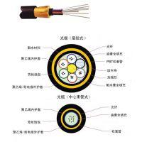 [厂家直销]耐斯龙48芯单模全自承式室外通信光缆 ADSS 远距离架空光缆 可定制