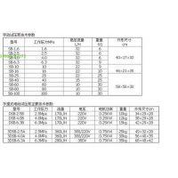 中西 手动试压泵 型号:ZXSB-16 库号:M269951