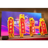 中山专业舞狮表演,中山龙狮文化艺术团