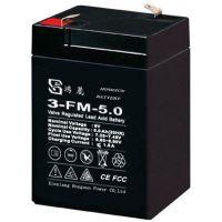 供应鸿晟12V5AH铅酸免维护蓄电池 电动卷帘门音箱音响UPS电池