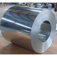 供应DX51D+Z马钢镀锌卷 鞍钢、首钢、唐钢、邯钢 天津代理商保证质量