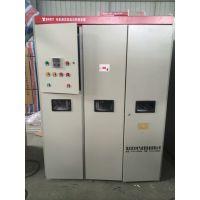 高压电动机液态软起动装置 液态软起动柜 双友水电阻启动柜直销