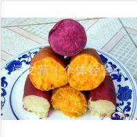 全国各大知名地瓜坊电烤、缸烤用红薯遗字138红薯