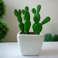 仿真热带绿色植物小盆栽 zakka杂货 迷你仙人掌配陶瓷花盆