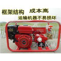 陕西汽油喷雾器 弥补市场空白的汽油喷雾器 润丰