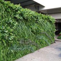 仿真尤加利草坪塑料假草坪背景墙绿植墙体绿化植物婚庆花墙挂装饰 优嘉工艺