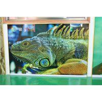 玻璃瓷砖装饰背景墙 电视影视背景墙UV彩印机 东方龙科UV2030平板喷图机